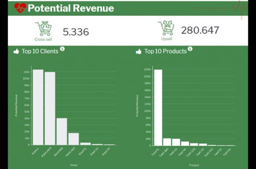 Potential Revenue forecast